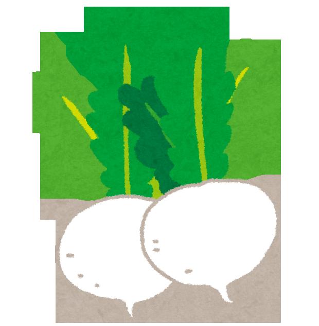 kabu_turnip